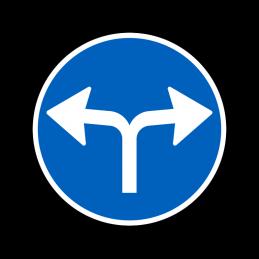 D11.8 - Påbudt kørselsretning