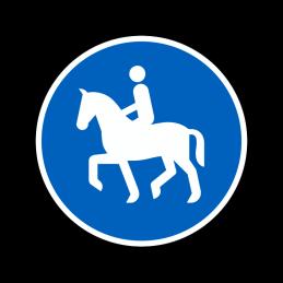 D23 - Ridesti
