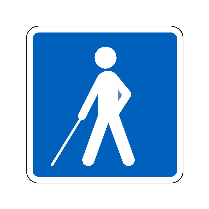 E24 - Vejledning for synshandicappede