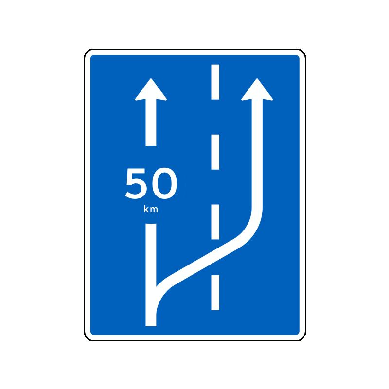 E37 - Krybespor