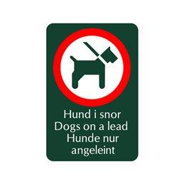 SN-A26 Hund i snor på tre sprog