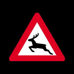 A 26 - Risiko for dyrevildt