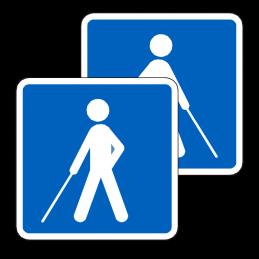 E24/E24 - Vejledning for synshandicappede