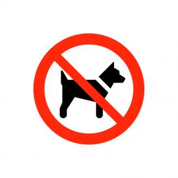 Hund forbudt
